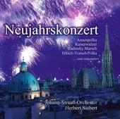 Neujahrskonzert by Various Artists