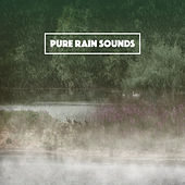 Pure Rain Sounds by Various Artists