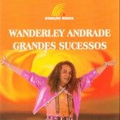 Grandes Sucessos de Wanderley Andrade