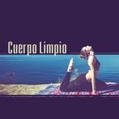 Cuerpo Limpio – Relajarse, Calma, Equilibrio, Sonidos, Meditación de Meditación Música Ambiente