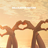 Relaxation Nature by Various Artists