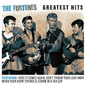 Greatest Hits von The Fortunes