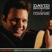 Down to My Last I Love You von David Houston