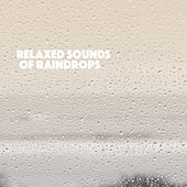 Relaxed Sounds of Raindrops by Various Artists