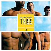Welcome To The Tribe 2 von Various Artists