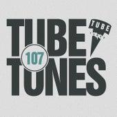 Tube Tunes, Vol. 107 von Various Artists