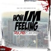 How Im Feeling (feat. Ace Cino) de SadaBaby