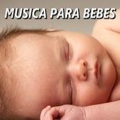 Musica para Bebes de Musica para Bebes