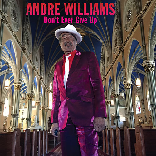 Don't Ever Give Up by Andre Williams