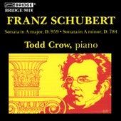 SCHUBERT: Piano Sonata in A major, D. 959 / Piano Sonata in A minor, D. 784 by Todd Crow
