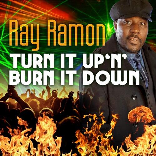 Turn It Up 'N' Burn It Down by Ray Ramon
