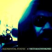 Elemental States of Metamorphosis de Vex