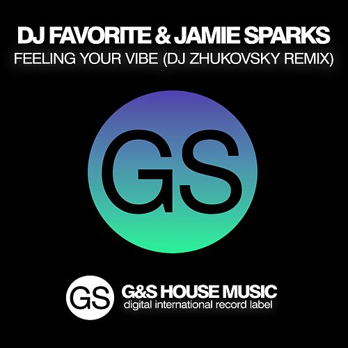 Feeling Your Vibe (DJ Zhukovsky Remix) by Jamie Sparks