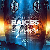 Raices Cibaeñas, Vol. 1 de Various Artists