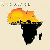 Wild Africa by Amanda Lee Falkenberg