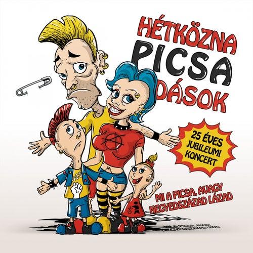 Mi A Picsa, Avagy Negyedszázad Lázad by Hétköznapi Csalódások
