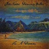 In A Dream de Dominic Miller