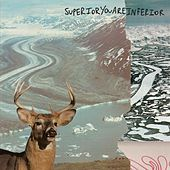 Superior You Are Inferior by Rae Spoon