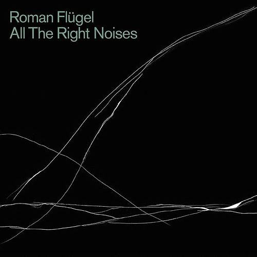 All The Right Noises by Roman Fluegel