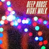 Deep House Night Walk by Various Artists