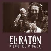 El Ratón de Diego El Cigala
