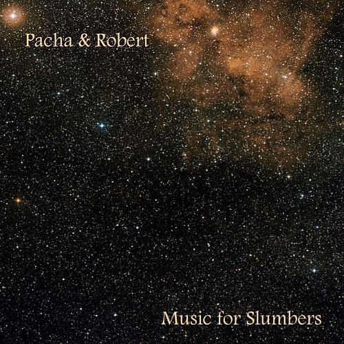 Music For Slumbers by Pacha Massive