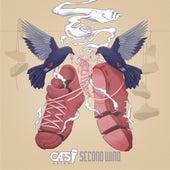 Second Wind by Cas Metah