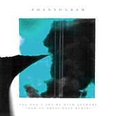 You Don't Get Me High Anymore (How To Dress Well Remix) de Phantogram