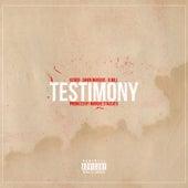 Testimony by Baby Rasta & Gringo