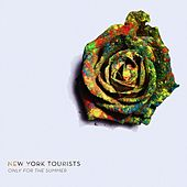 Only for the Summer by New York Tourists