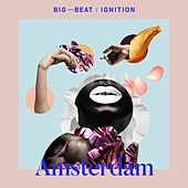 Big Beat Ignition: Amsterdam de Various Artists