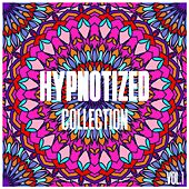 Hypnotized Collection, Vol. 1 - Selection of House Music by Various Artists