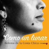 Como un Lunar, Boleros de la Costa Chica de Various Artists