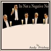 It's Not a Negative No von Andy Prieboy