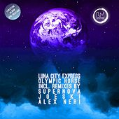 Olympic Horse by Luna City Express