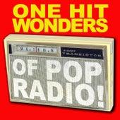 One Hit Wonders Of Pop Radio by Various Artists