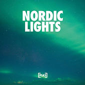 Nordic Lights de Various Artists