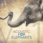 Acoustic for Elephants by Various Artists