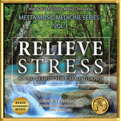 Relieve Stress: Sound Remedy For Calming Down de Yuval Ron
