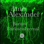Burrow / Darkness Eternal by Amir Alexander