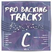 Pro Backing Tracks C, Vol. 2 by Pop Music Workshop