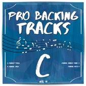 Pro Backing Tracks C, Vol. 11 by Pop Music Workshop