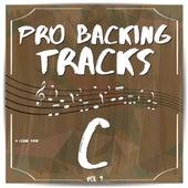 Pro Backing Tracks C, Vol. 9 by Pop Music Workshop
