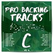 Pro Backing Tracks C, Vol. 12 by Pop Music Workshop