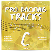 Pro Backing Tracks C, Vol. 5 by Pop Music Workshop