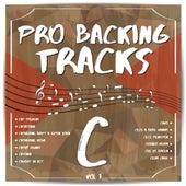 Pro Backing Tracks C, Vol. 7 by Pop Music Workshop