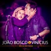 Céu de São Paulo (Ao Vivo) de João Bosco & Vinícius