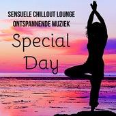 Special Day - Sensuele Chillout Lounge Ontspannende Muziek voor Helende Massage Eenvoudige Yoga Oefeningen en Meditatie Retraite von Chill Out