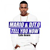 Tell You Now (Tyro Remix) by Mario