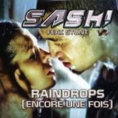 Raindrops by Sash!